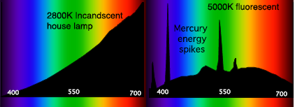 Spectral_Power_Distributions